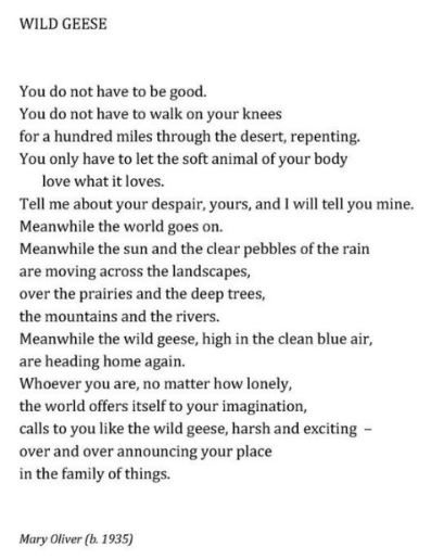 Mary Oliver_Wild Geese