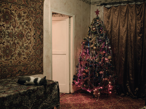 Katyas_Christmas tree_Pushok sleeping_Donbass January 2015 .jpg
