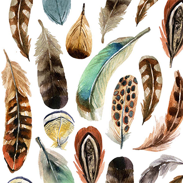 Servet Feathers.jpg