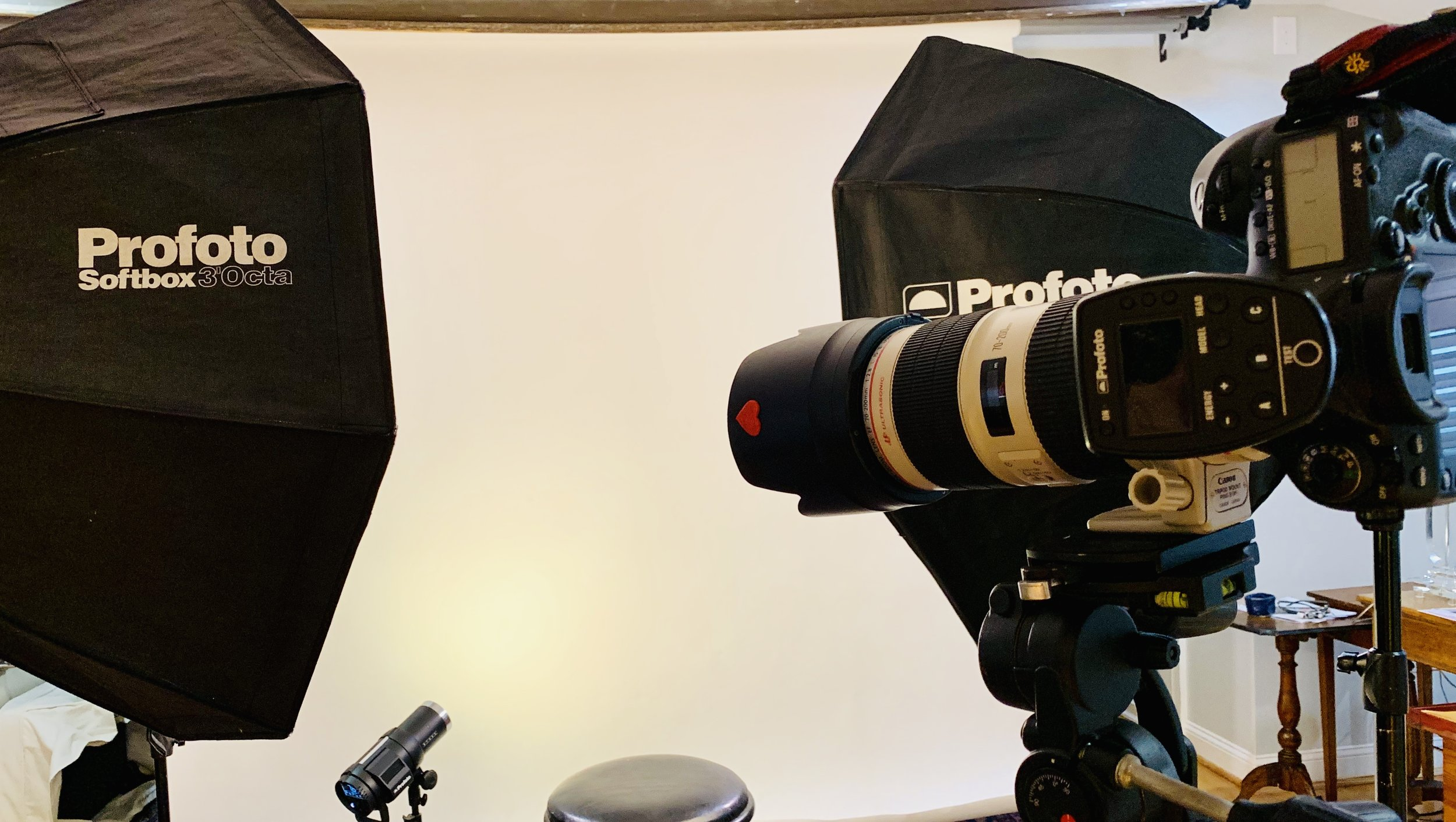 This is the equipment I use to produce professional Canadian passport photos.