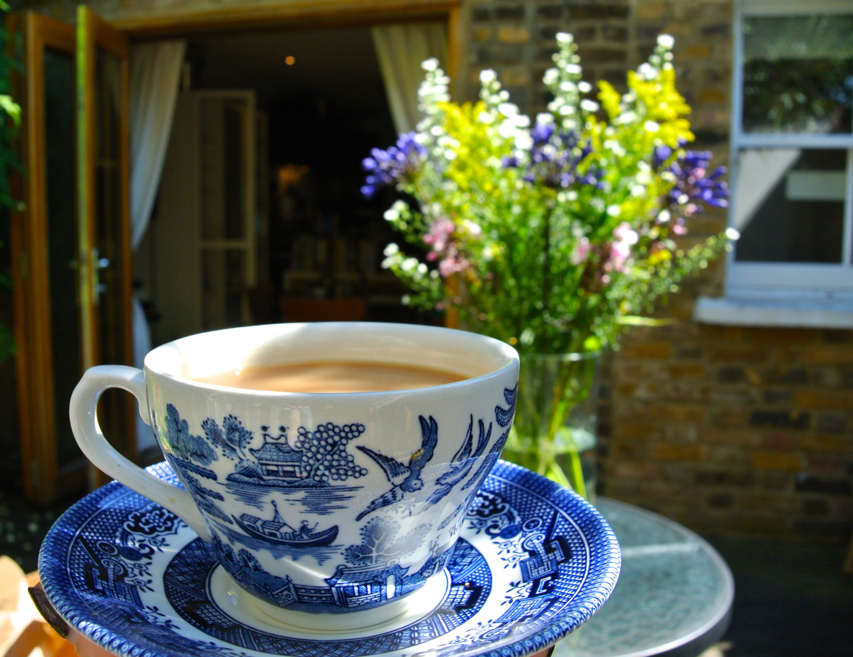 Freddie's Flowers Tea.jpg