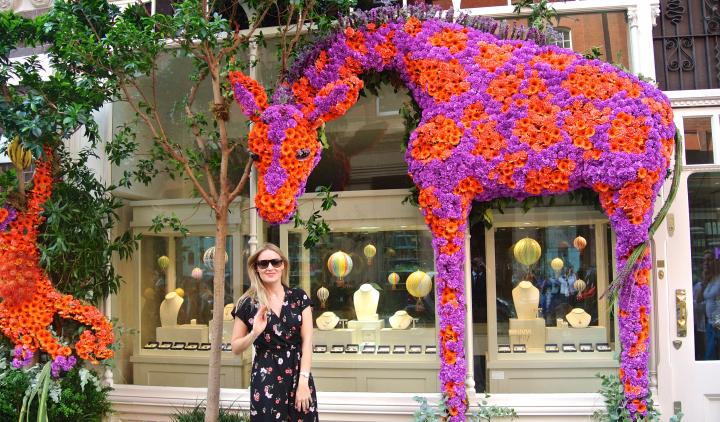 Floral Safari Kiki Giraffe Shot.jpg