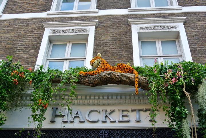 Floral Safari Hackett Leopards.jpg