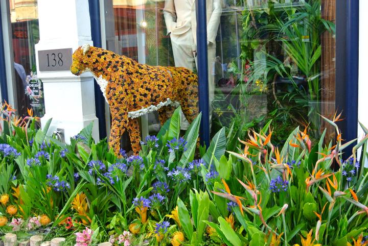 Floral Safari Hackett Leopard.jpg