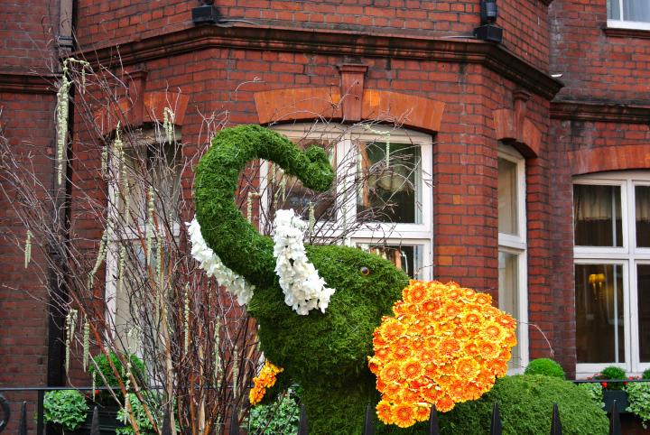 Floral Safari Sloane Club.jpg