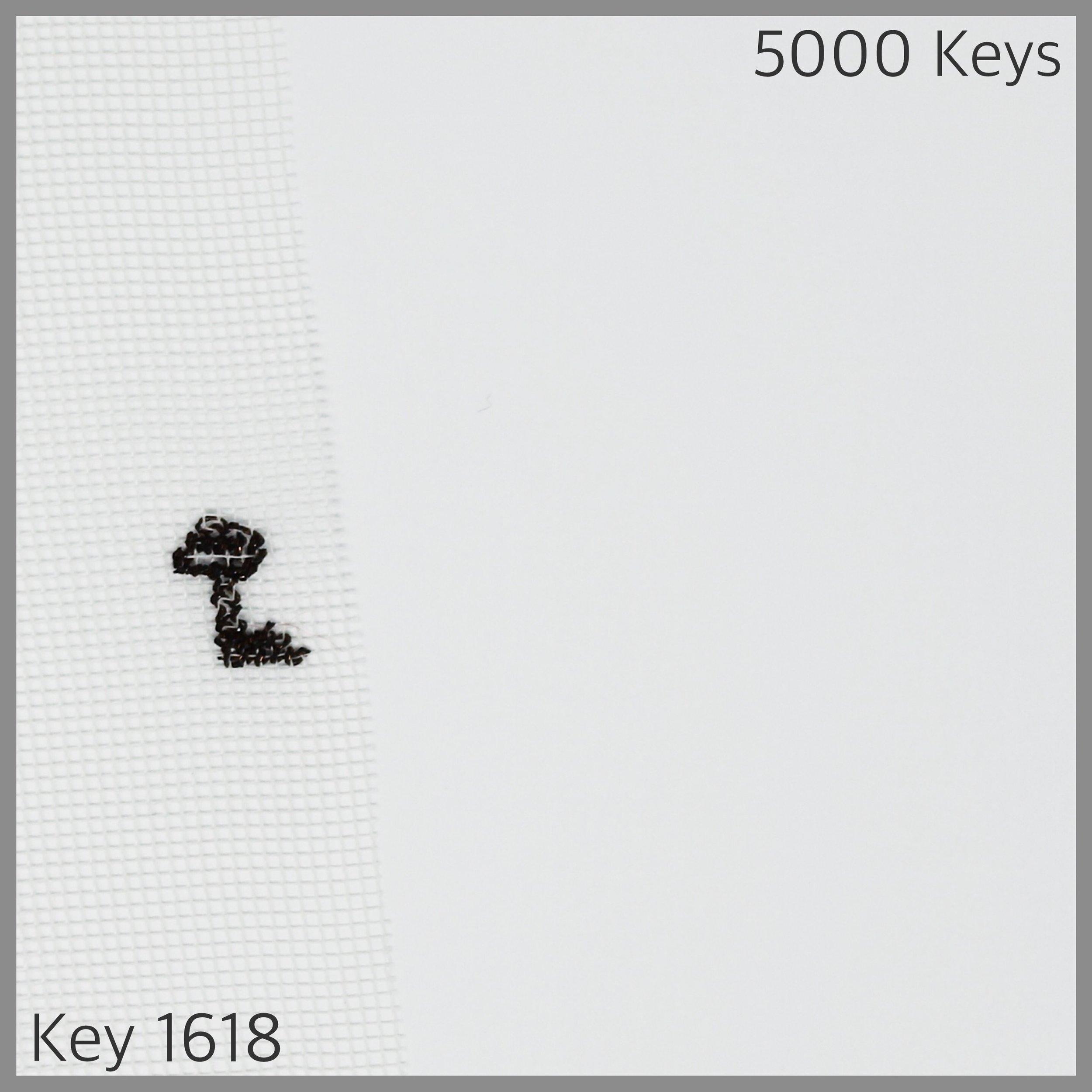 Key 1618 - 1.JPG