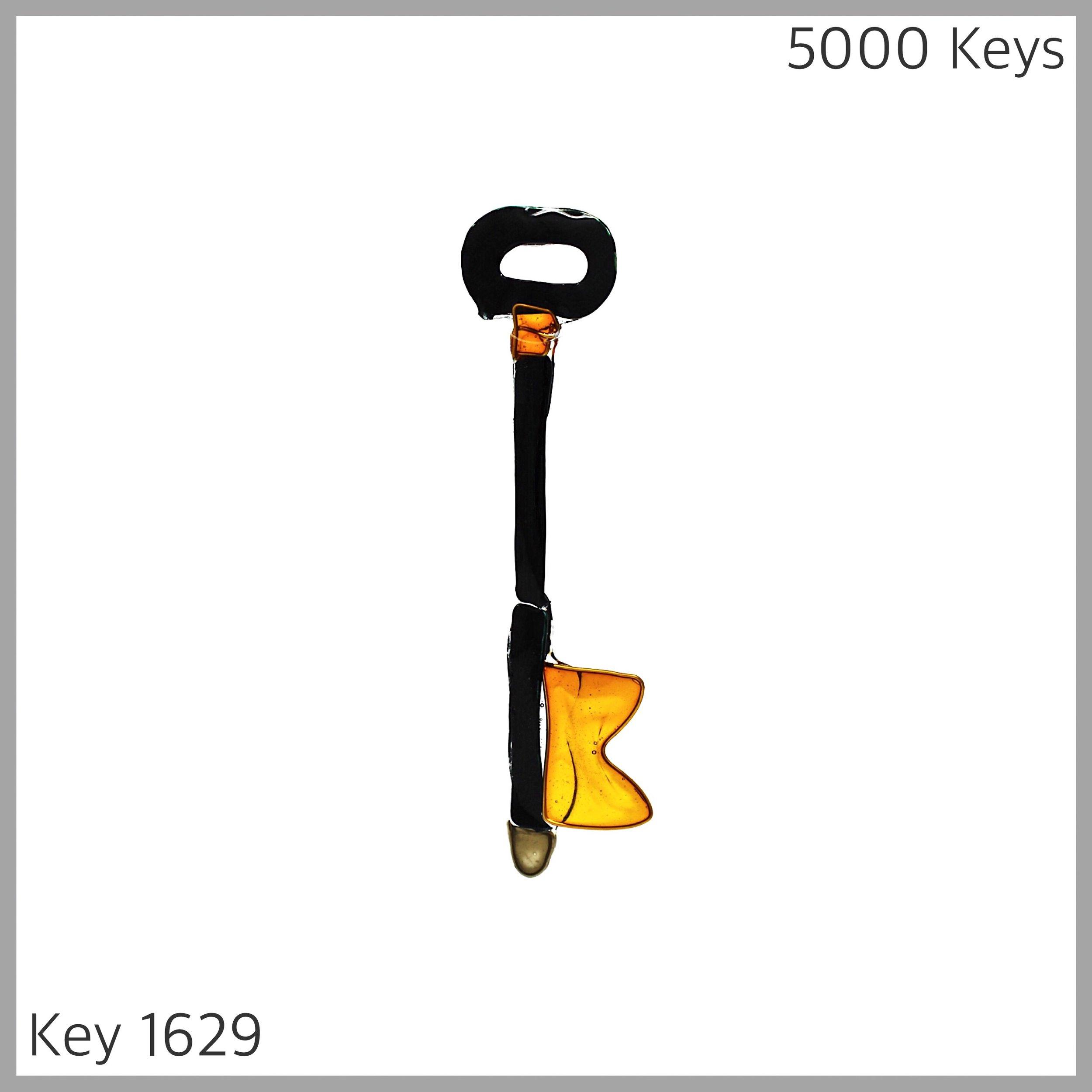 Key 1629 - 1.JPG
