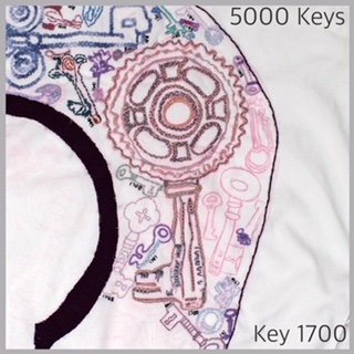 Key 1700 - 1.JPG