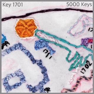 Key 1701 - 1.JPG