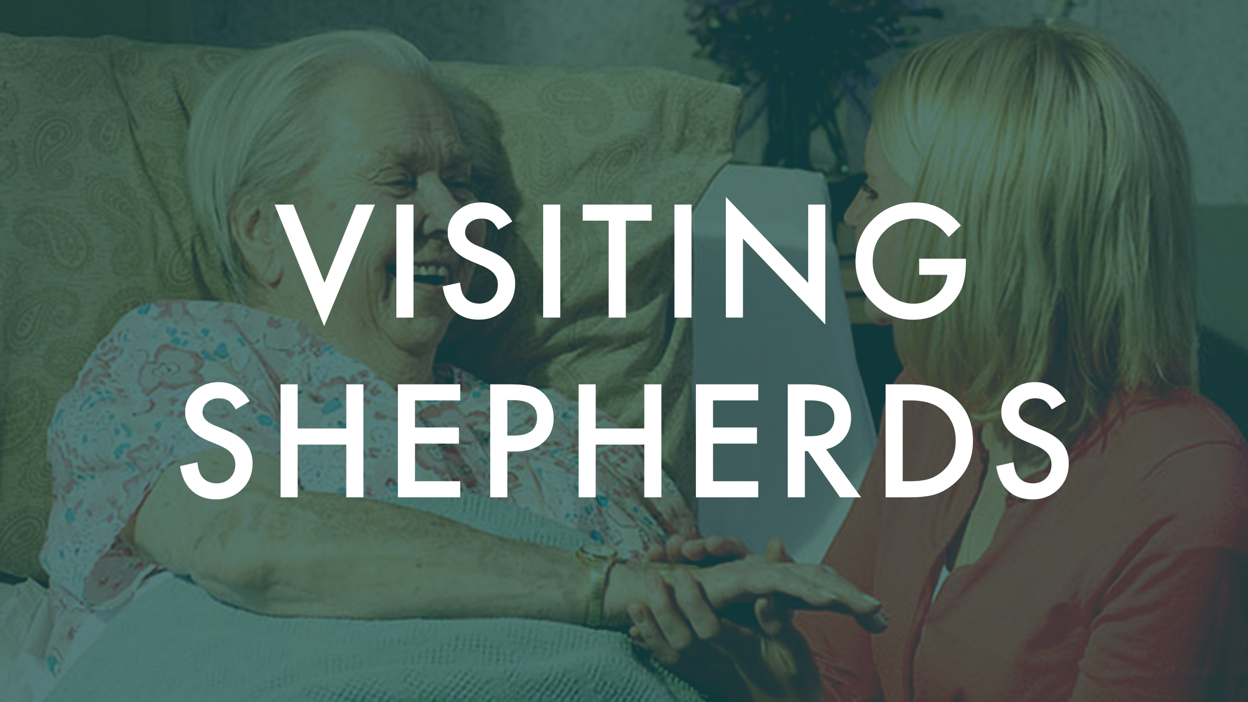 Visiting Shepards.jpg