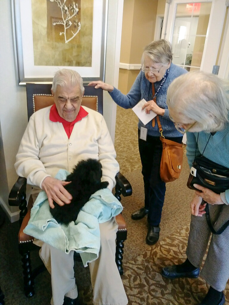 Atria Puppies Photos - The puppies had a great time visiting the residents at Atria on March 29th. Thank you to Mike Monte for bringing the puppies and creating smiles all around! Check out a few photos here.