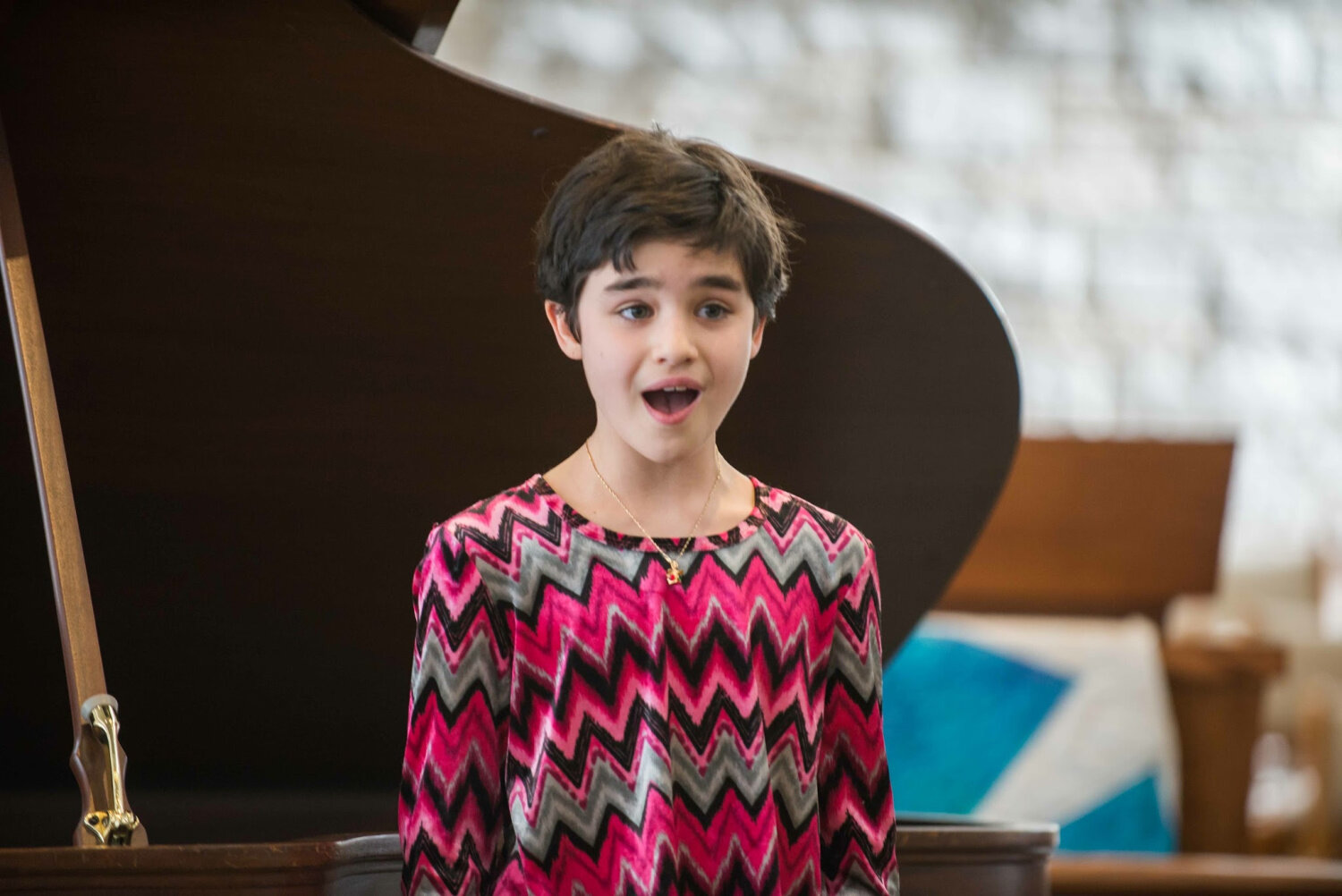 Voice and Singing Lessons   in Mendota Heights   for beginner, intermediate, and advanced students of all ages   CALL 651-263-9475 TO SCHEDULE YOUR FIRST LESSON   REQUEST INFO