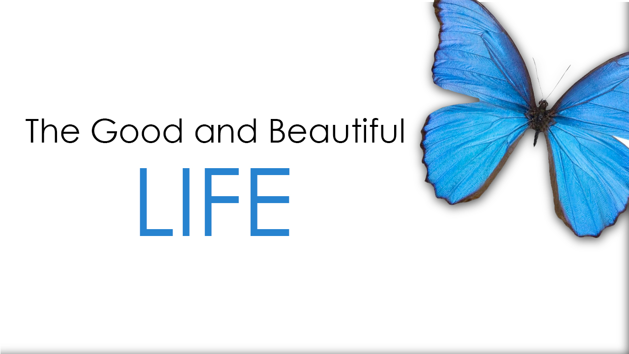 """Join Our Current Small Group Series! - VCC is going through the book """"The Good and Beautiful Life"""" as a whole church. we'll be studying this book in our Small Groups. To download a sample, and order the book, click here!"""