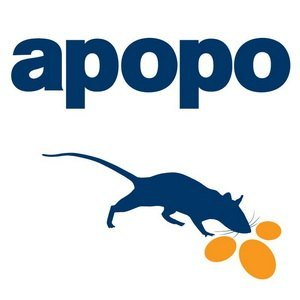 apopo hero rats auction charity at campo & campo antwerp