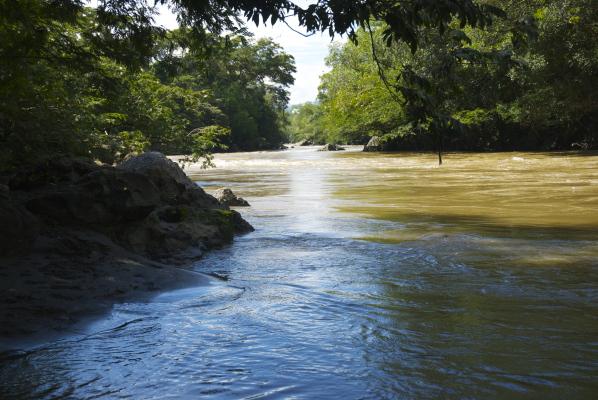 El rio magico.jpg