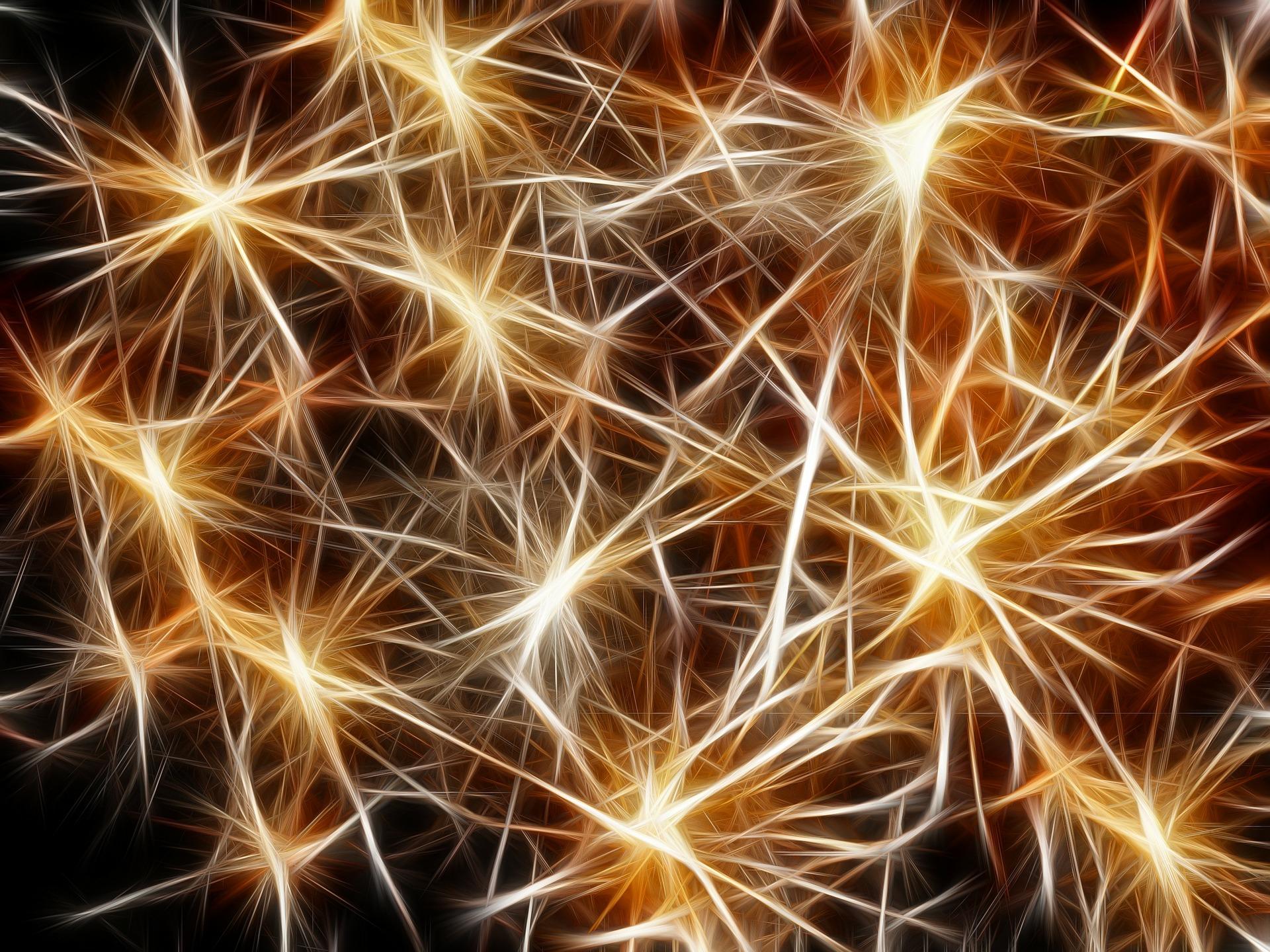 neuron star.jpg