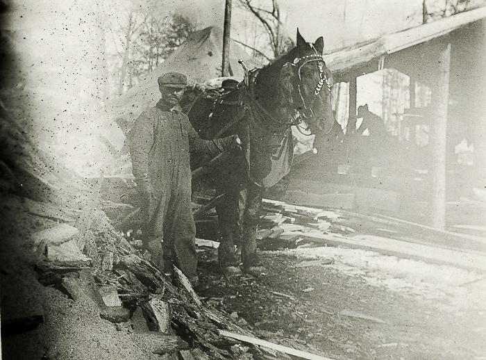 Sawmill man & horse
