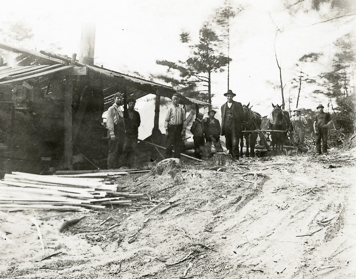 Sawmill near Austin Road