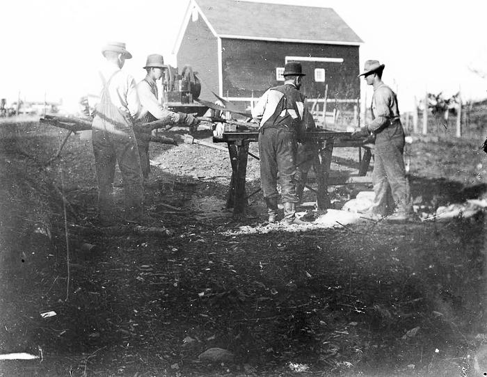 Austin men sawing