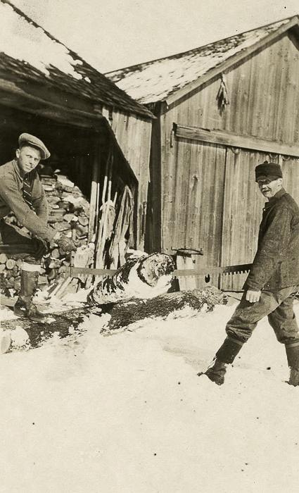 Gordon & Adelbert Austin cross cutting wood