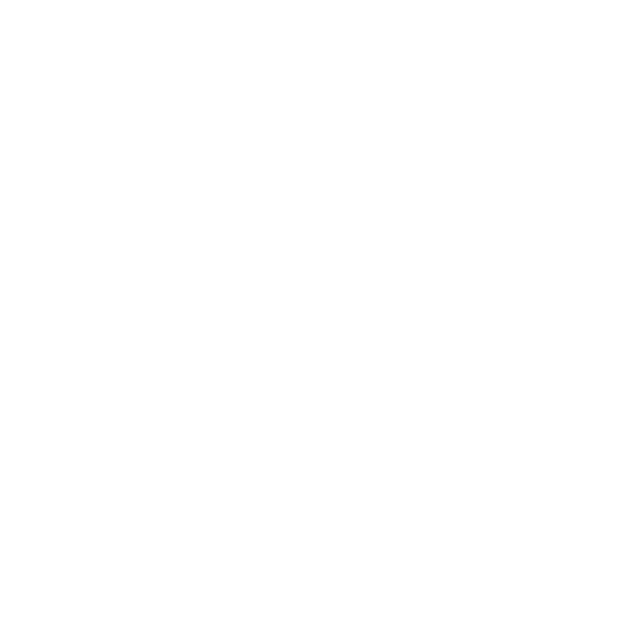 mountainlogo-white-small.png