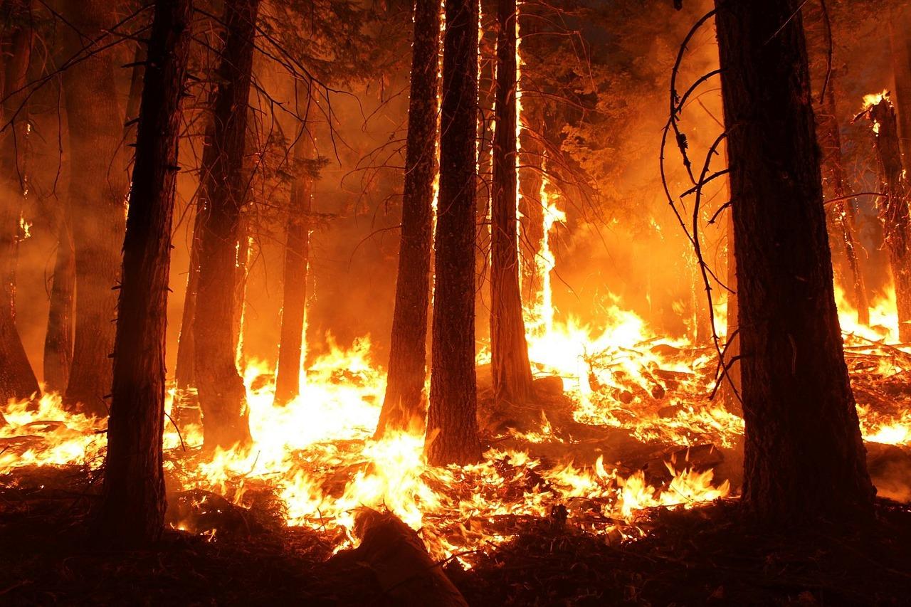 Wildfire image courtesy of  skeeze at Pixabay