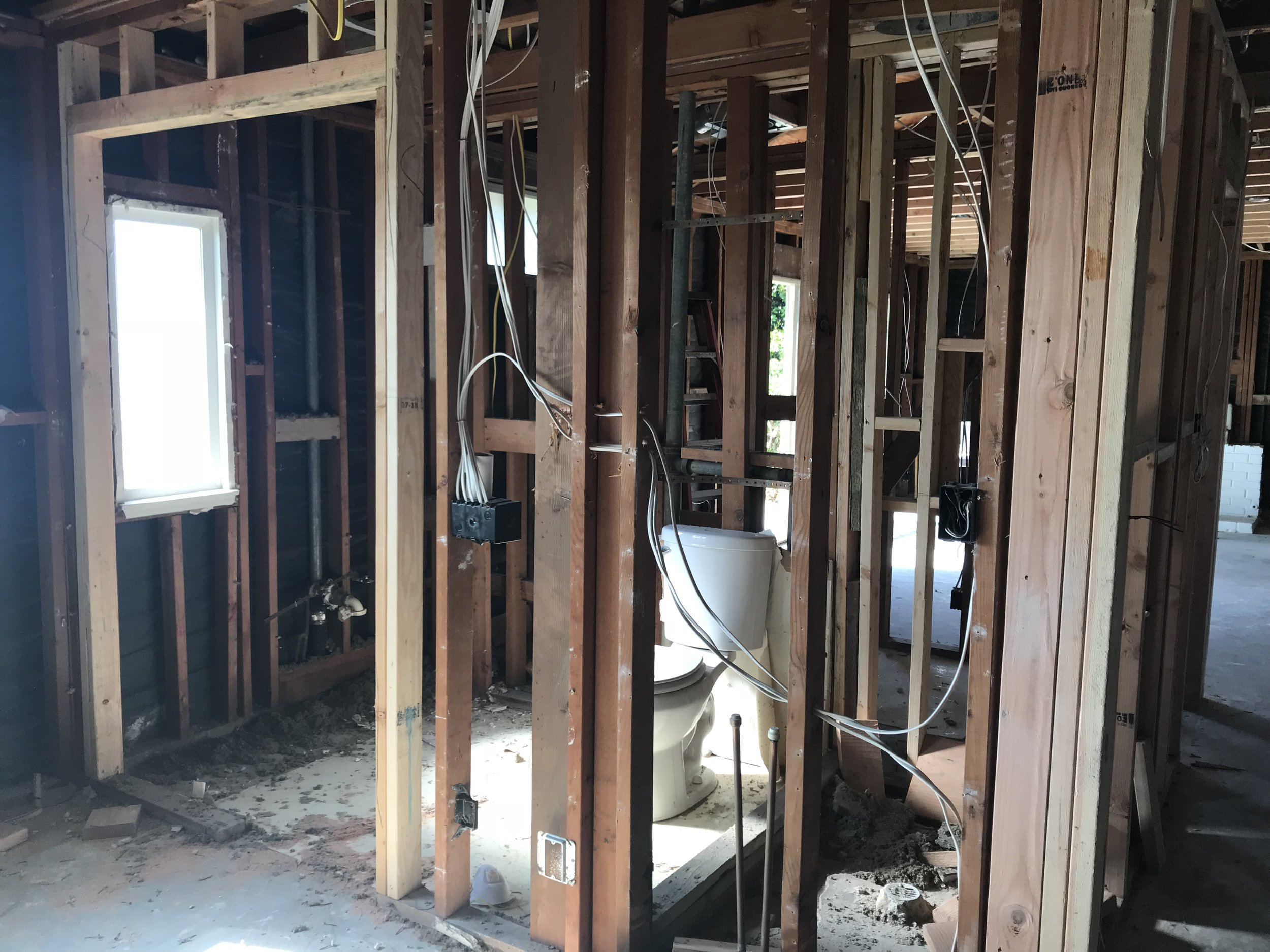 Master Bathroom  - Demo'd and reframed