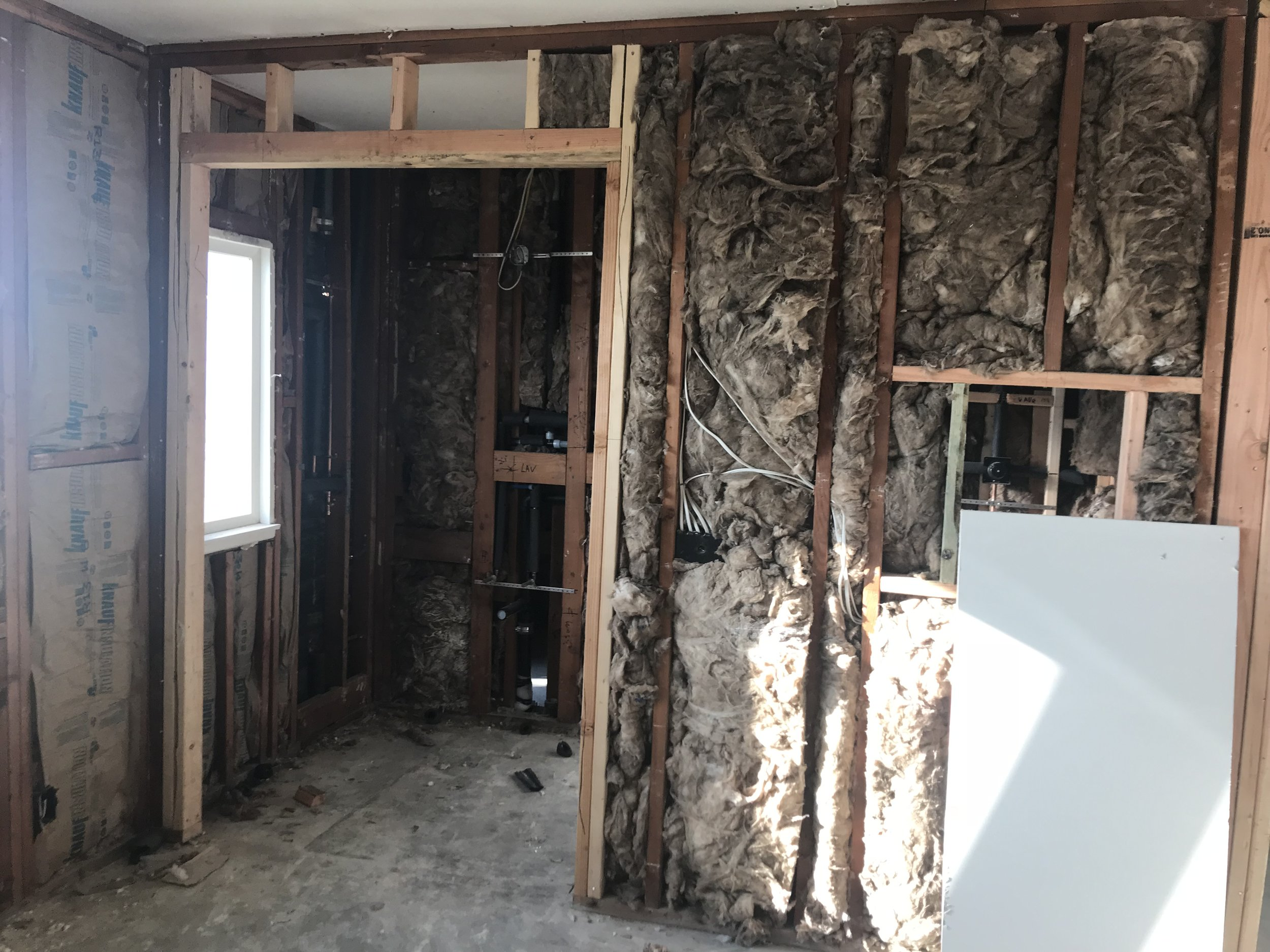 Master Bathroom  - New insulation and framing