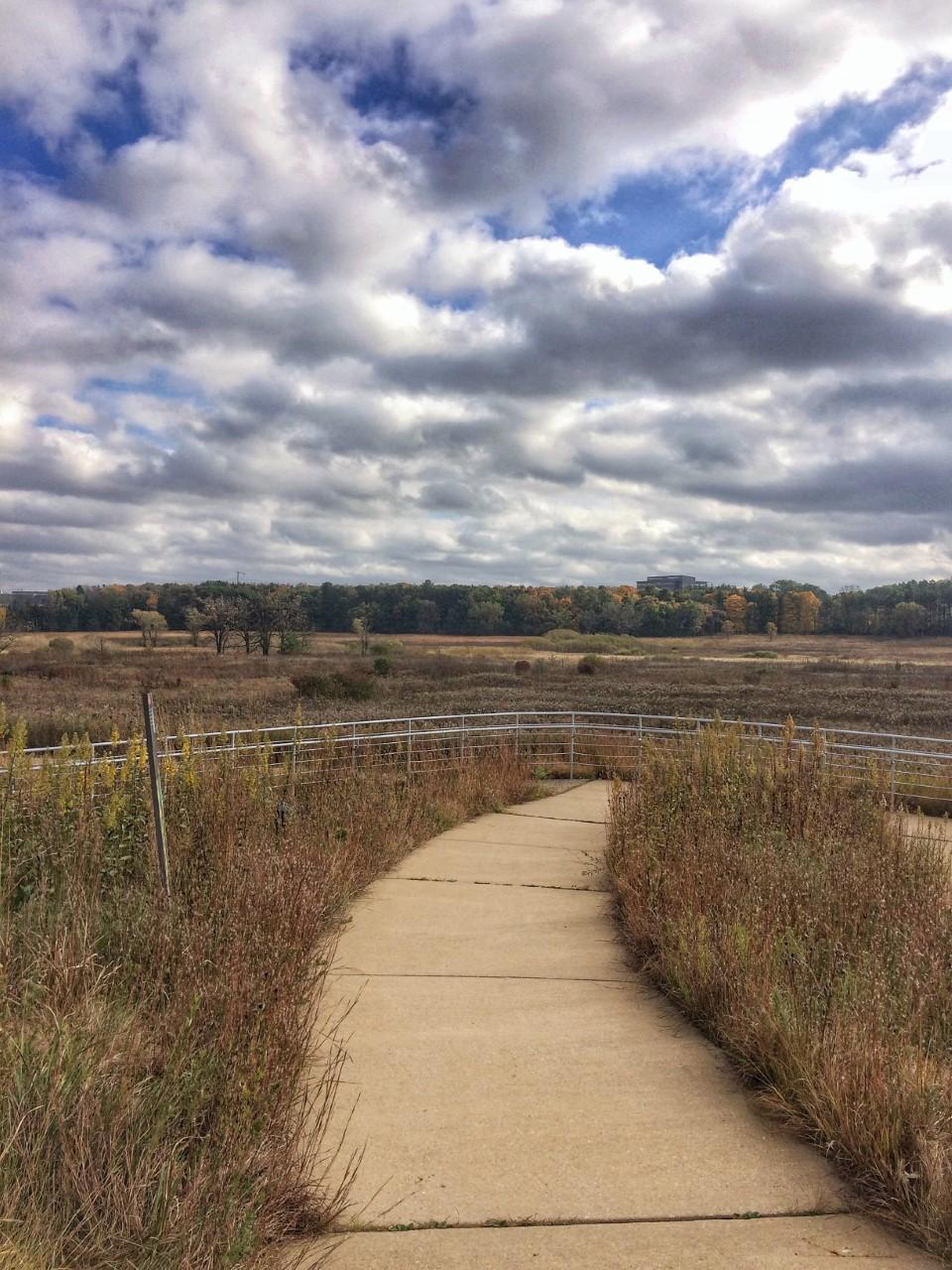 University of Wisconsin- Madison Arboretum