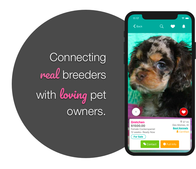 The easy, trustworthy way to find your fur-ever friend - All for the love of pets
