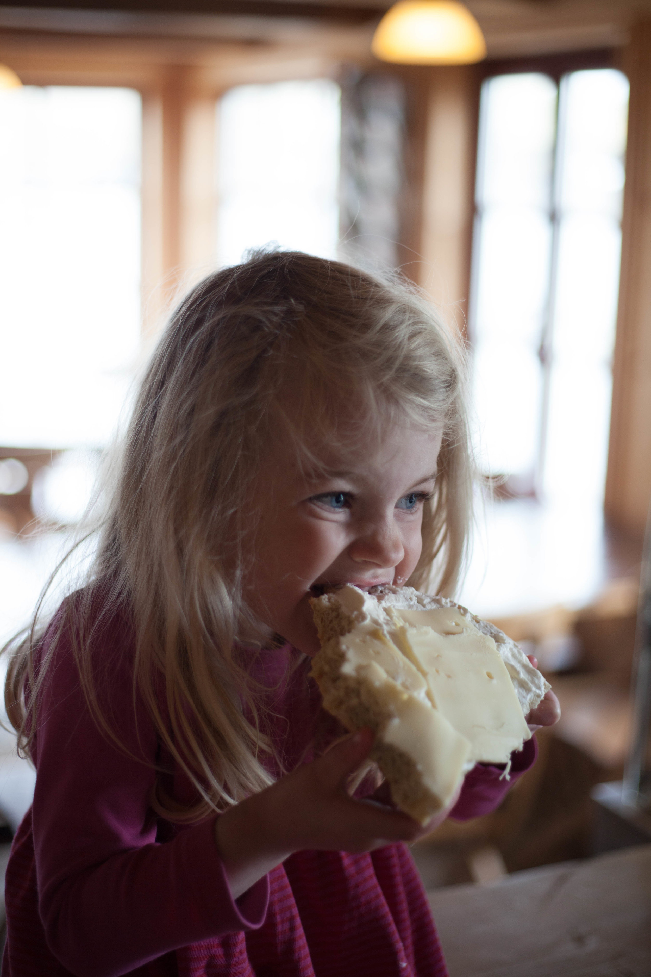 Our youngest regular breakfast guest - she eats her bun with whipped cream and cheese, and you are more than welcome to do so to. -