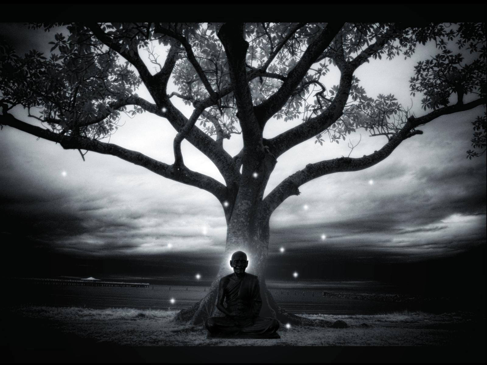 in_meditation____by_knotty82.jpg