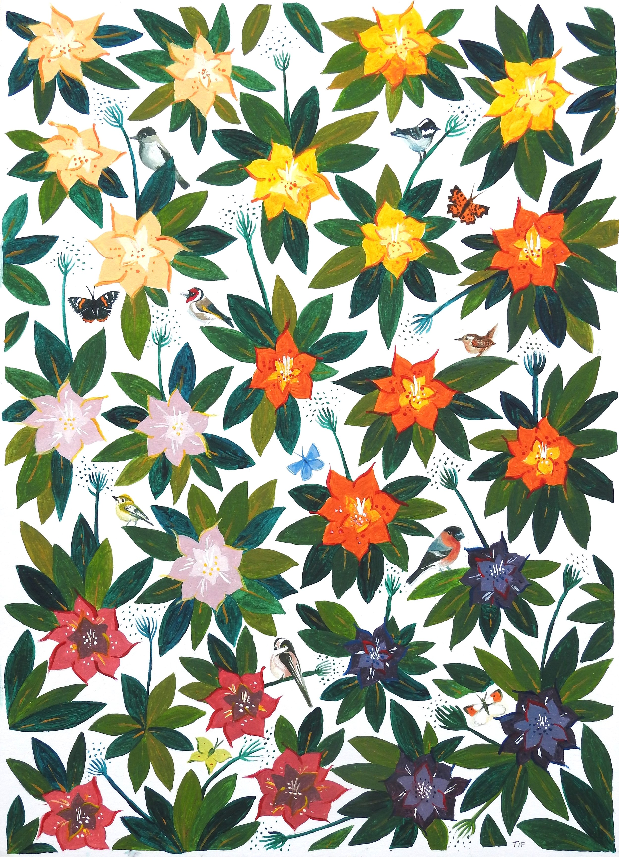 'The Westonbirt Rhododendrons' illustration inspired by my visit to Westonbirt Arboretum