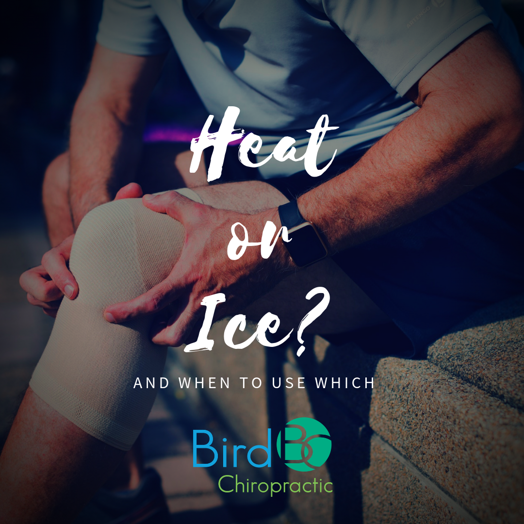 bird-chiropractic-heat-or-ice-therapy.png