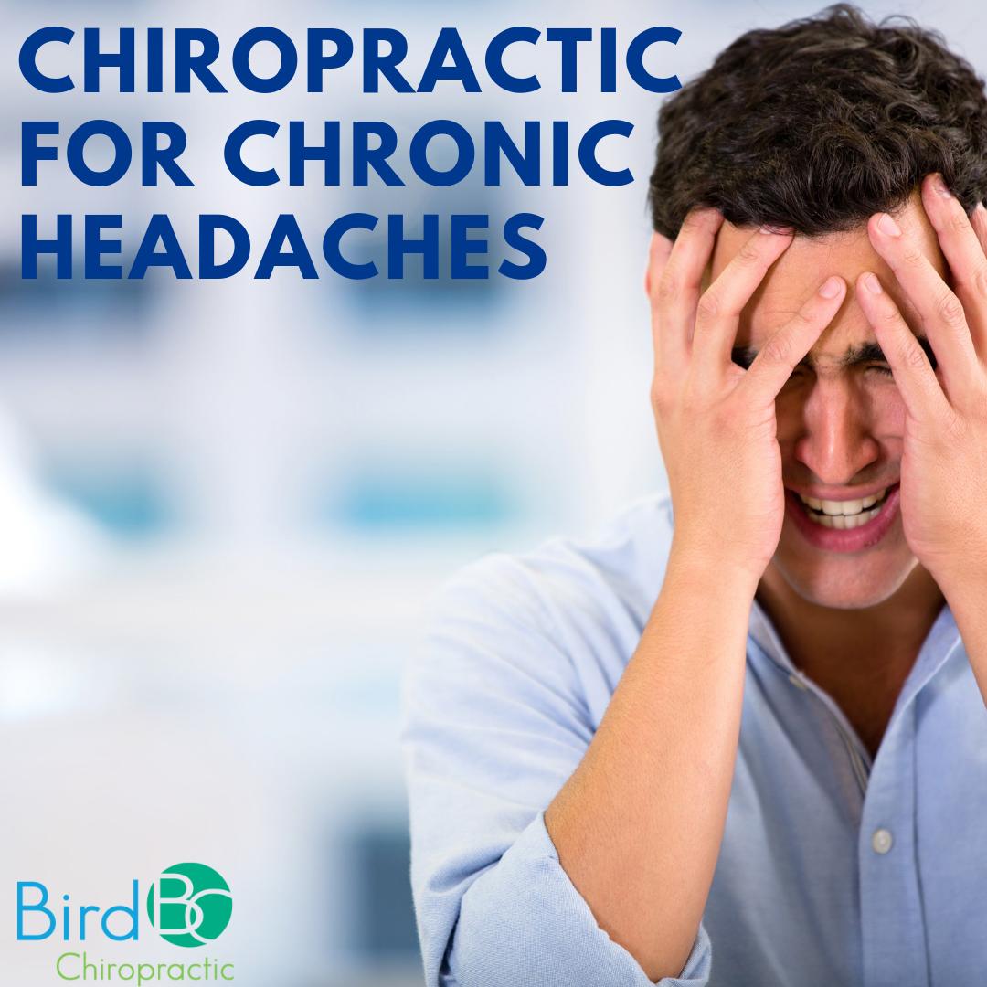 bird-chiropractic-chronic-headaches.png