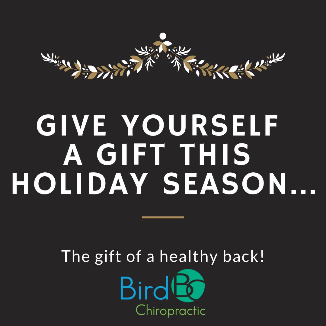bird-chiropractic-healthy-back.png
