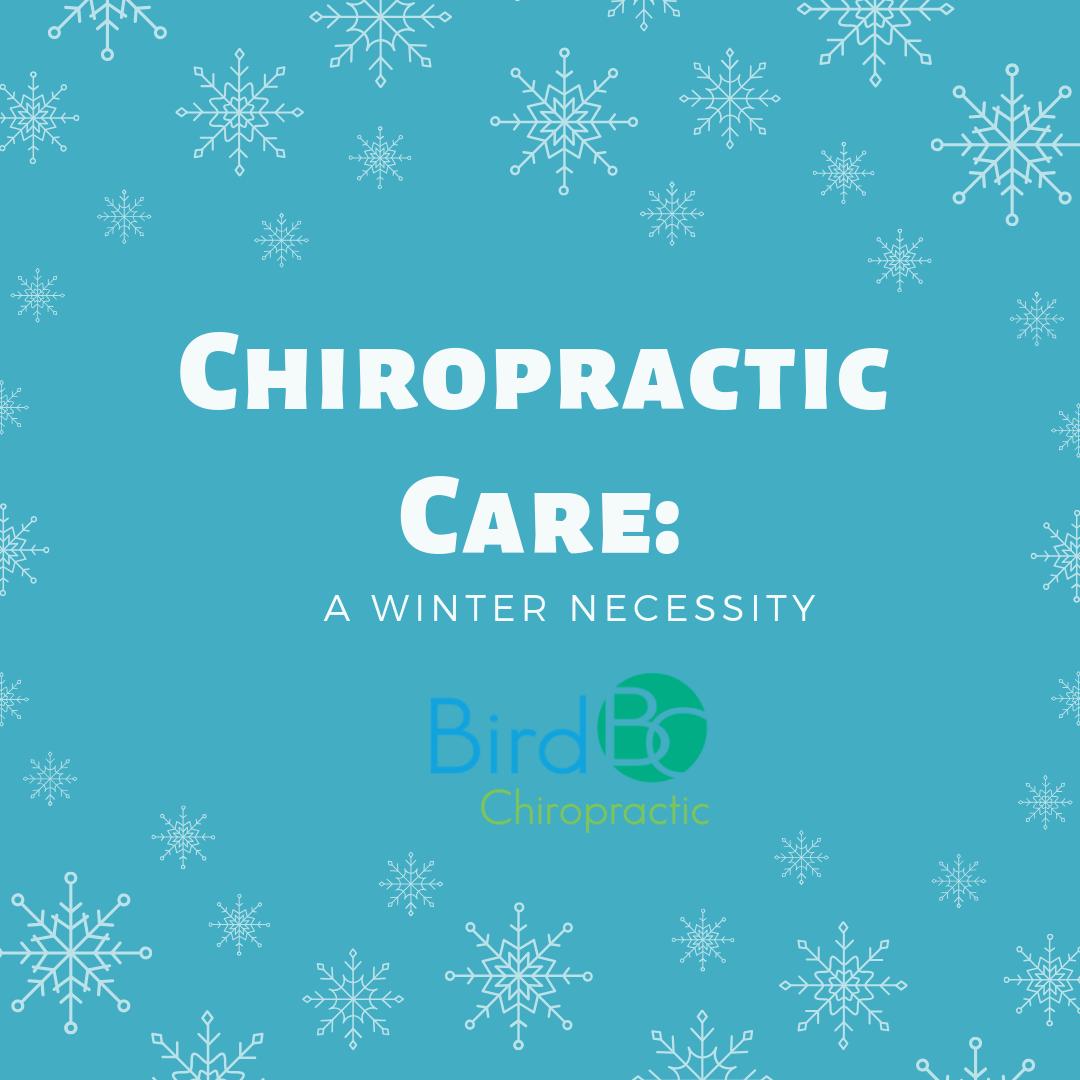 bird-chiropractic-winter-necessity.png