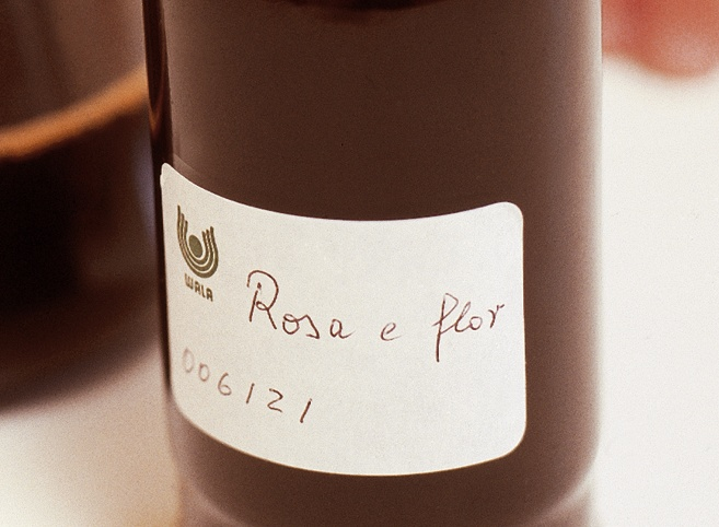 Rose mother tincture