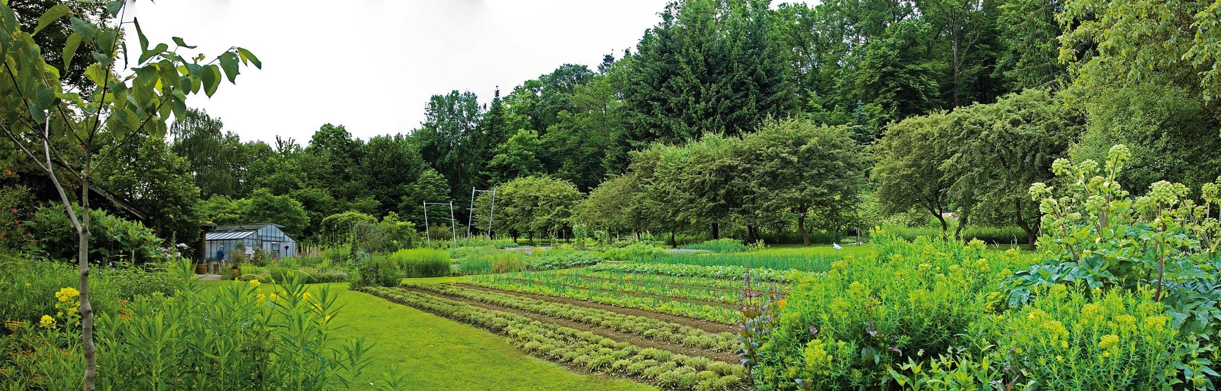 WALA/Dr. Hauschka biodynamic medicinal plant gardens