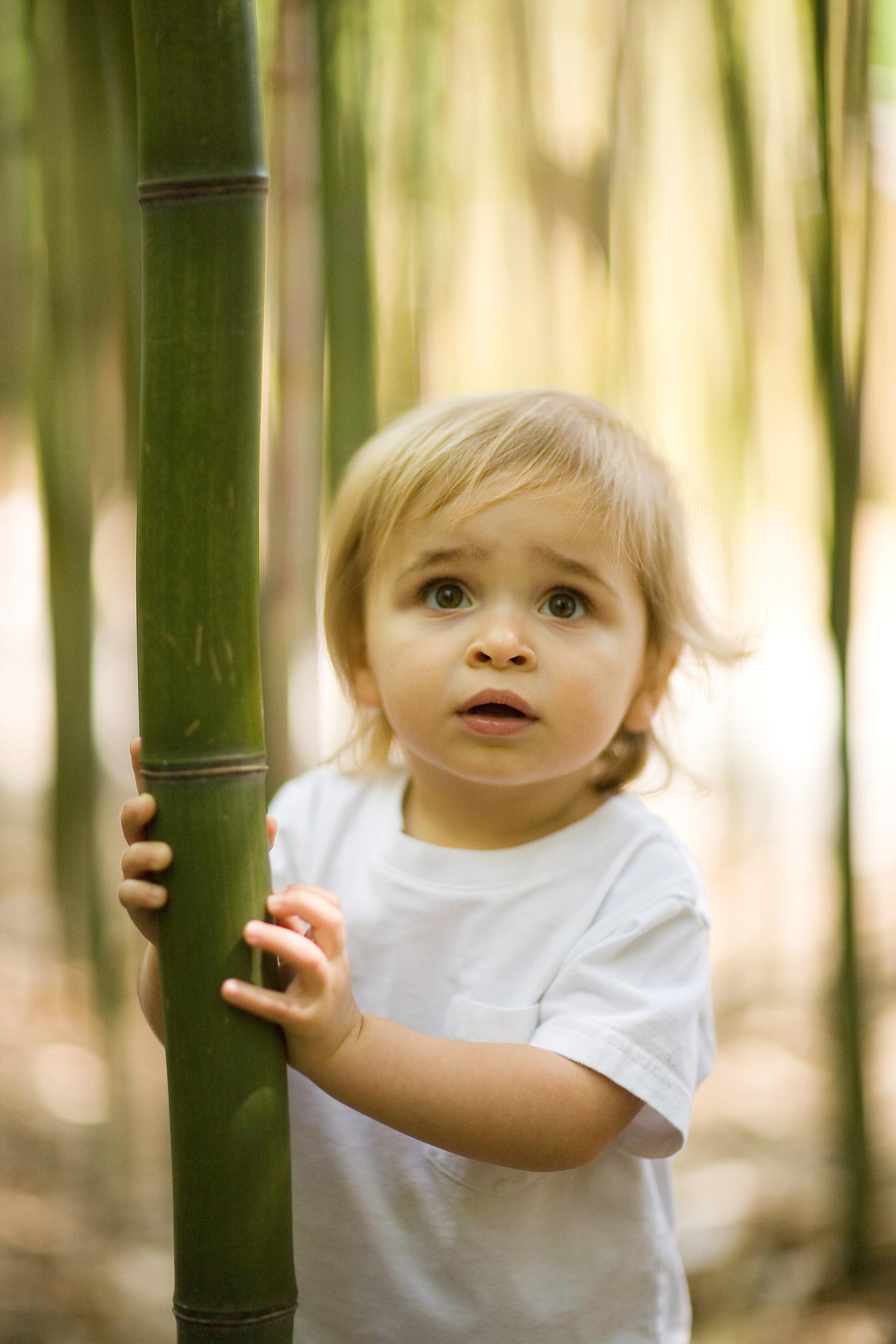 bamboo_boy.jpg