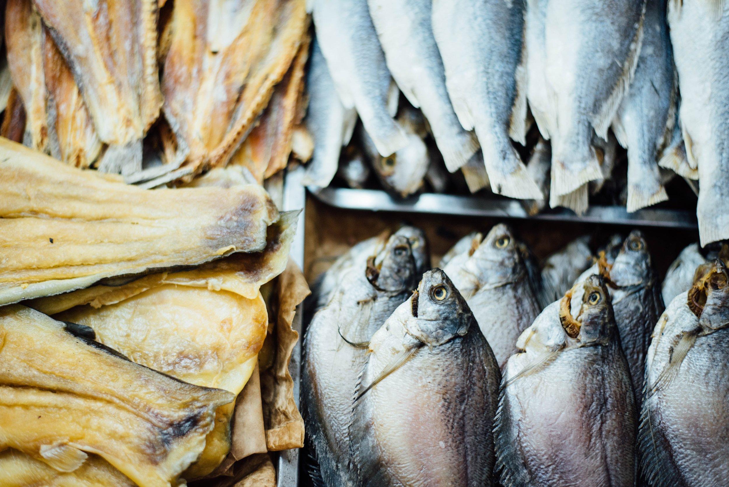 180720 FISH.jpg