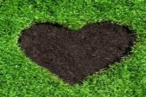Image of heart cut out of green lawn to illustrate Turf Preserve fertilizer and weed control services.