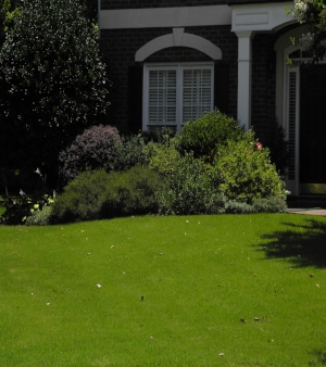 Image of home with healthy, green lawn to illustrate Turf Preserve optional lawn care services.