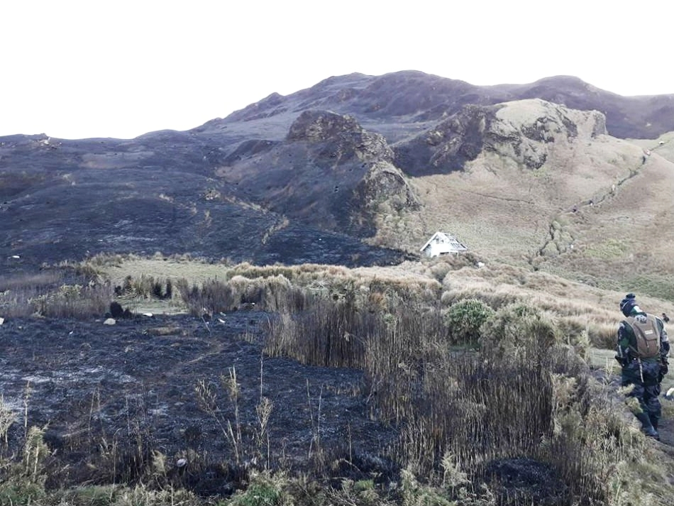 Mt. Pulag after the 2018 grassfire. Image  via .