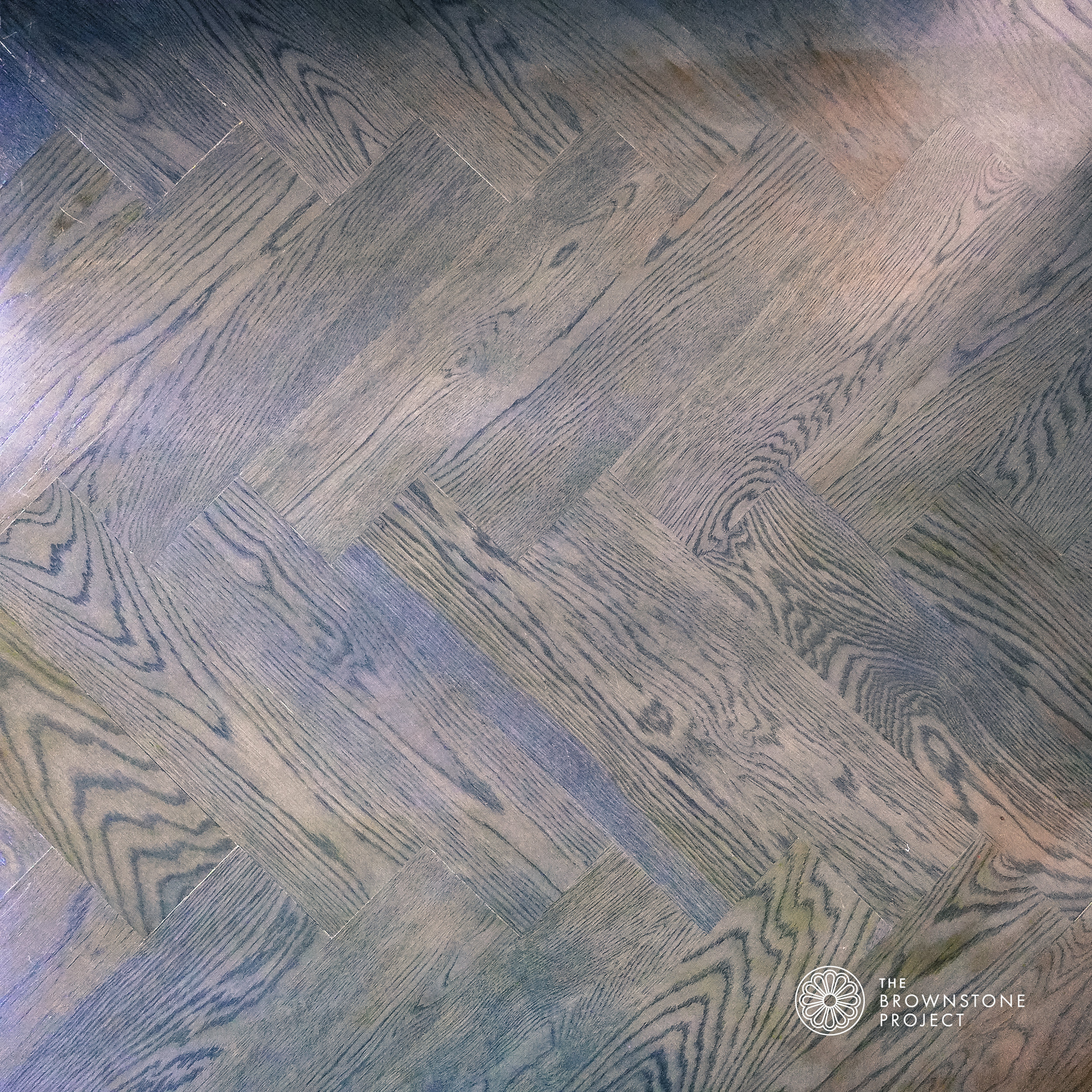 Floor C.jpg