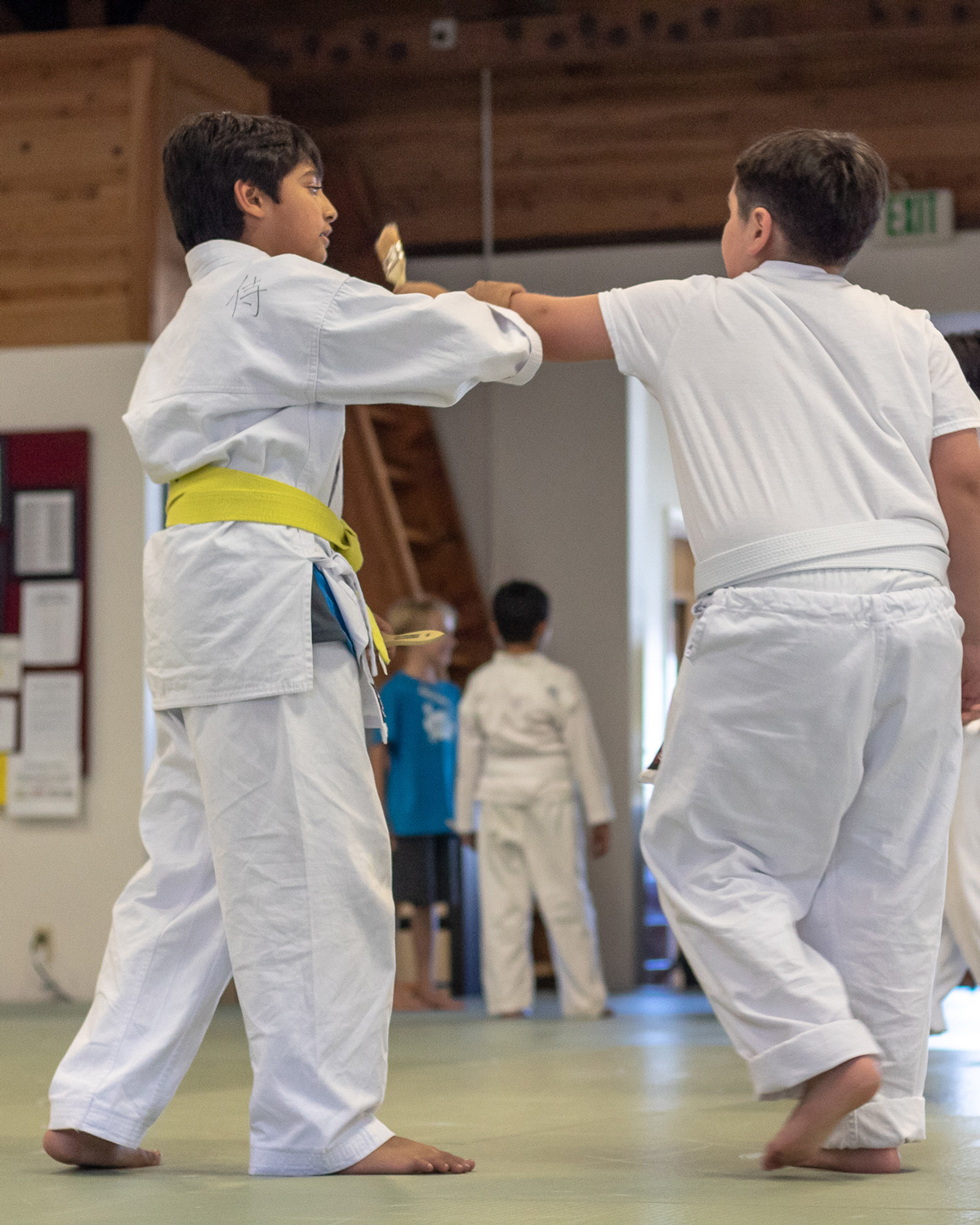 YOUTH CLASS - Our intention with our youth students (ages 7 to 11) is to develop powerful dynamos who learn self-defense and the art of aikido.Youth students are taught how to avoid being bullied while not becoming a bully. They adopt the perspective of a peaceful warrior – to become a strong, centered person who can choose from many options to deal with the aggressive pervasive in their world and today's society. This can only be learned through hands-on experiential training. We welcome you to call today to set up an appointment.