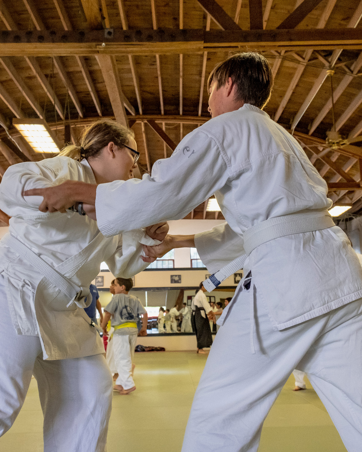 TEEN CLASS - Ages 12-17 are crucial in a child's development. As they make the transition to adulthood, they face a variety of challenges. From societal influences to overwhelming physical and emotional growth, it's a great time for them to tap into their calm, powerful inner strength.Aikido provides a venue unlike any other to learn how to take risks, expand their comfort zone, and learn about their self as well as others.Stepping on the mat and practicing aikido gives teens a break from the fast-paced, high-tech, instant gratification world. Here, they develop skills to settle, ground and be a positive force in the world. Call us today to schedule a time to come down.