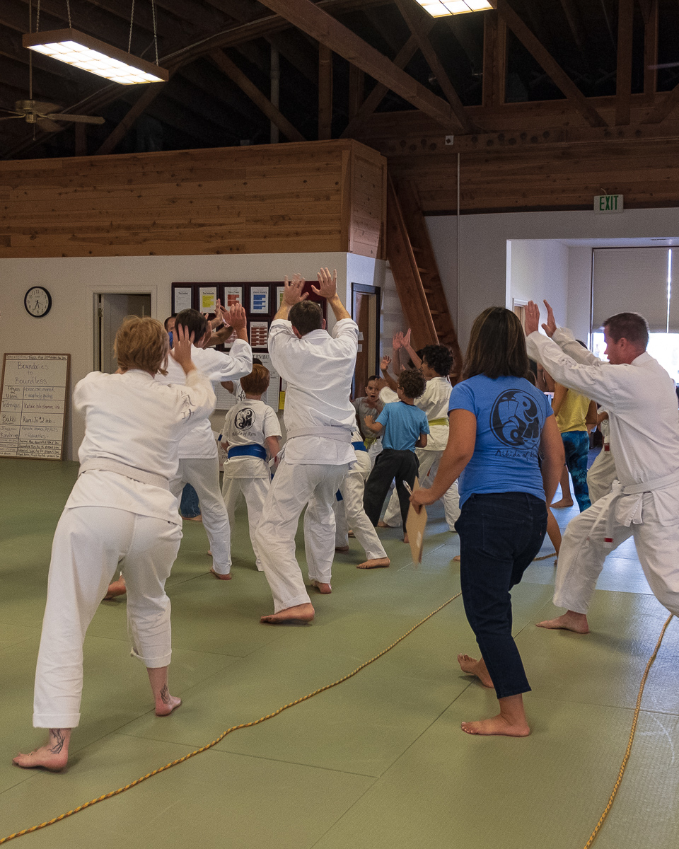 FAMILY CLASS - Benefitting families is one of our biggest priorities here at the Epic Dojo. Learning how to take care of each other through dynamic and potentially dangerous situations, treat each other with respect, support each other and attain group and individual goals make for strong, flexible, dynamic people and healthy families. We've created a schedule to allow parents/guardians to train at the same time as their youth or teen students.The entire dojo is structured to respect the unity in our diversity with the feeling of one big family. The best way to experience our dojo is to set up an appointment for you and your family to visit and observe, and perhaps try out the class.