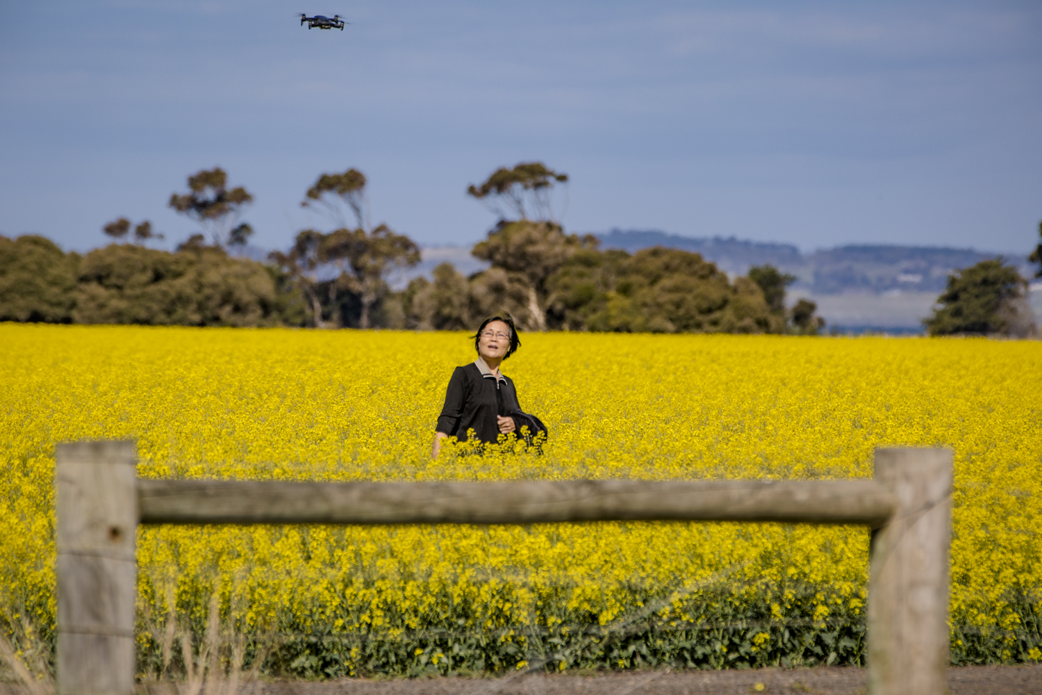 Anyone for a selfie? This lady wanted to take a selfie of herself in the canola fields.