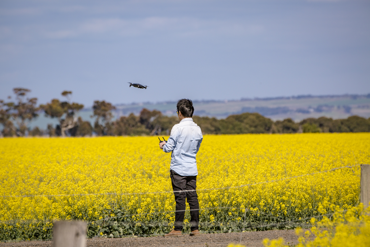 Launching a drone to fly over the canola fields, if he turned around he would see the planes taking off and landing directly behind him.